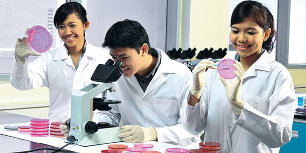 Diploma in Biotechnology