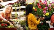ITI in Horticulture