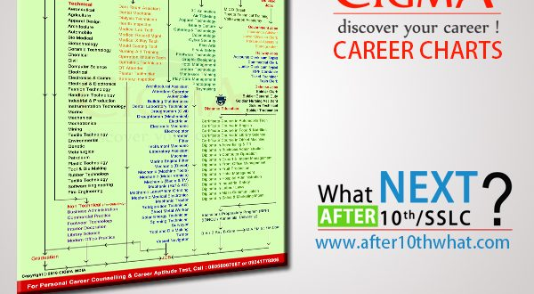 Cigma career chart after 10th what next in india altavistaventures Images